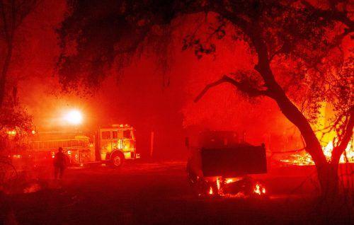 Die verheerenden Waldbrände in den USA nehmen kein Ende. Anhaltende Hitze, Trockenheit und Wind versprechen neues Ungemach. AFP