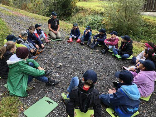 """Im Rahmen des Unterrichtsprojektes """"Vielfalter Schule"""" der inatura Dornbirn lernen die SchülerInnen der VS Obdorf Bludenz, die Natur zu begreifen. Stadt Bludenz, VS Obdorf"""