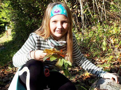 Im Wald gibt es für die Schüler viel zu entdecken.Schule