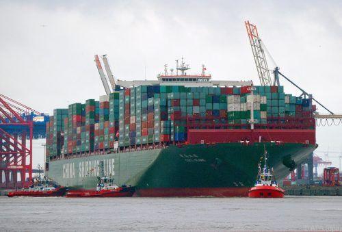 Oft erobern Tier- und Pflanzenarten per Schiff, Flugzeug und Lastwagen neue Lebensräume außerhalb ihrer Heimat. dpa