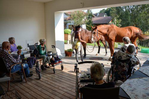 Priya Ender, Mucko und Sanches statteten den Bewohnern einen kleinen Besuch ab. Haus Koblach