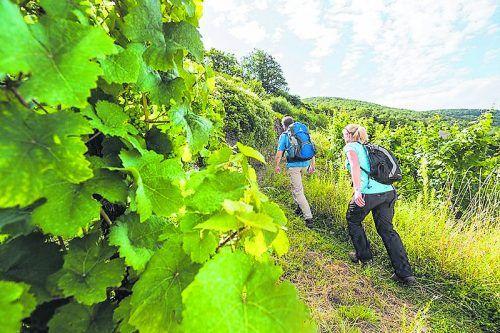 Rheinland-Pfalz-Tourismus GmbH/Dominik Ketz