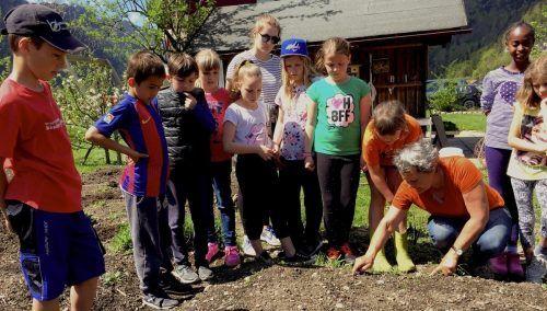"""Bahnhofs- und Gemeinschaftsgarten sowie der natürliche Erdkeller sind die Säulen des Vereins """"Gartenfreunde Reuthe Bezau"""" - Obfrau Isabella Moosbrugger ist mit den Kindergärtlern, den Volks- und Mittelschulkindern mit viel Spaß am Gärtnern."""