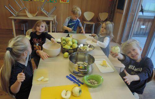 Die Äpfel im Garten sammeln, dann waschen und schneiden – und am Ende ein leckeres Apfelmus genießen!Kindergarten Meiningen