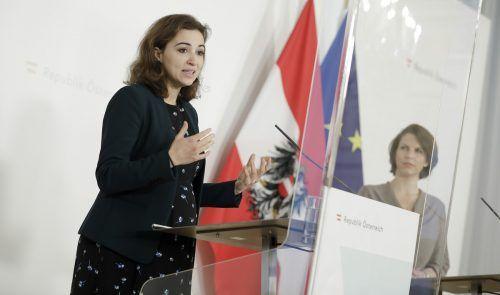 Es sei wichtig, dass man die Behörden digital erreichen kann, sagt Zadic.APA