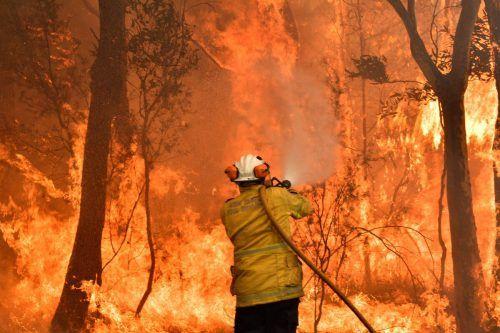 Laut der Studie nehmen extreme Wetter-situationen und Waldbrände zu. AFP