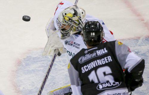 Mit dem Puck auf Augenhöhe sind Wien-Torhüter Bernhard Starkbaum und Bulldogs-Stürmer Simeon Schwinger.gepa