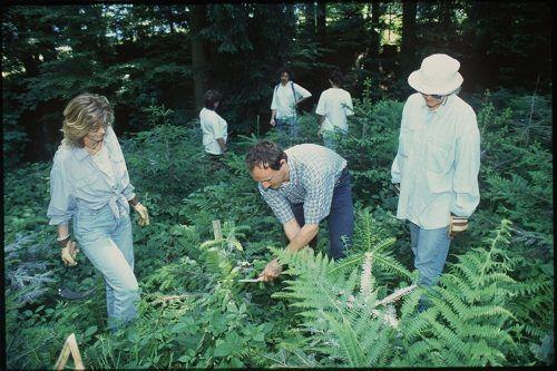 Mitarbeiter von Vorarlberg Tourismus beim Aufforsten am Bildsteiner Kälberboden 1997.