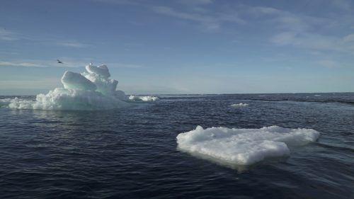 Über weiten Teilen der Arktis herrschten überdurchschnittliche Temperaturen. Rts