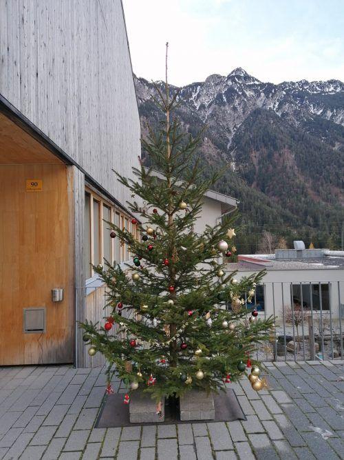 Auch am Tag ist der Christbaum vor dem Gemeindezentrum Braz ein Hingucker.DOB