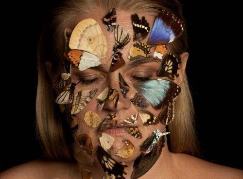 """""""Butterfly Biodiversity"""" heißt die Ausstellung von Bettina Bohne.erh"""