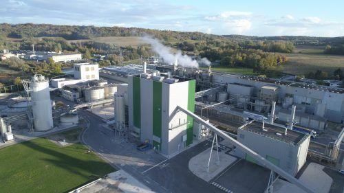 Das Biomassekraftwerk für SAICA, welches 2019 in Betrieb ging. bertsch