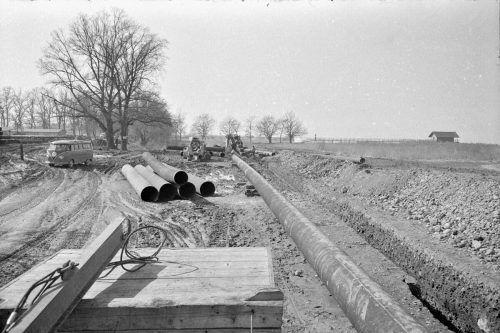 Der beliebte Weg entlang des Bodenseeufers enstand 1965.