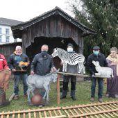 """<p class=""""caption"""">Die Figuren der etwas anderen Dorfkrippe werden von den Mitgliedern des Krippenvereins Götzis als Erstes in den Stall gebracht.</p>"""