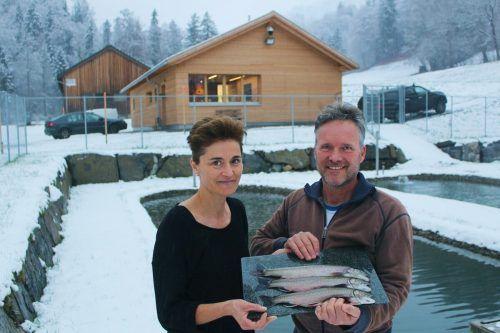 Ein Highlight von Heino Hubers Angebot sind Fische vom Fischgenuss Bregenzerwald, den Jürgen und Alexandra Wirth der VN-Heimat erläuterten. stp/2