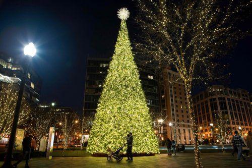 Glitzernde Beleuchtung und ein großer Christbaum erzeugen in Washington DC weihnachtliche Stimmung. AFP