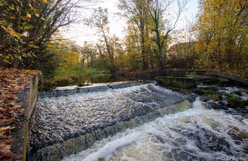 Kein Flussgebiet in Europa ist laut Studie noch frei von künstlichen Hindernissen. dpa
