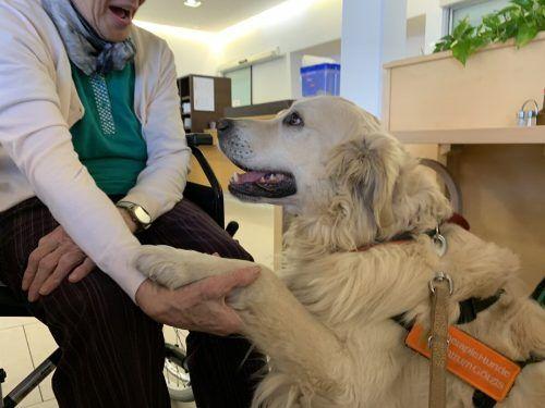 Ob Jugendliche oder Menschen mit Demenz – der Therapiehund wirkt auf die Menschen spürbar ein.Bily