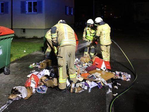 Auch die Feuerwehr Dornbirn kam zum Einsatz. FW DORNBIRN