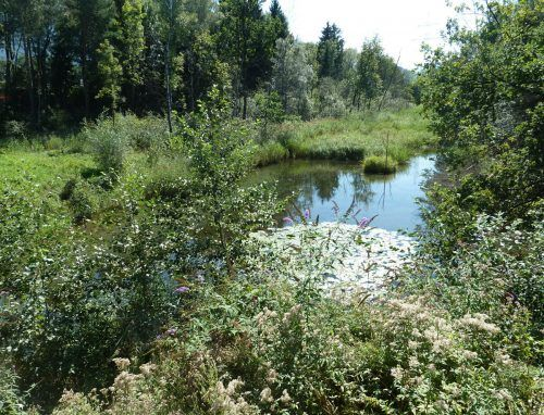 Besondere Naturbereiche verlangen nach besonderem Schutz.vn