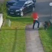 """<p class=""""caption"""">Das Video zeigt, wie brutal die Angeklagte mit den Hunden umgeht. Screenshot </p>"""