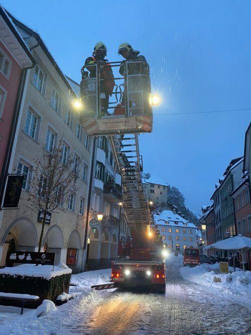 Die Feuerwehr Feldkirch-Stadt rettete den Stubentiger mit der Drehleiter aus seiner verzweifelten Lage. FW FELDKIRCH-STADT
