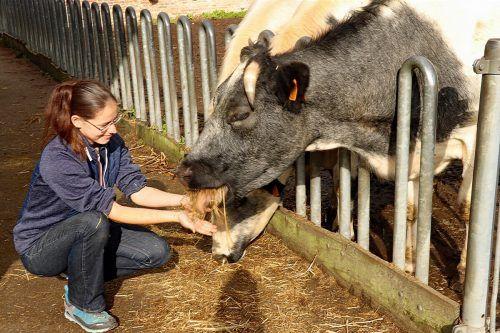 Susanne aus Dornbirn verbrachte einige Zeit auf einem Bauernhof in Belgien.aha