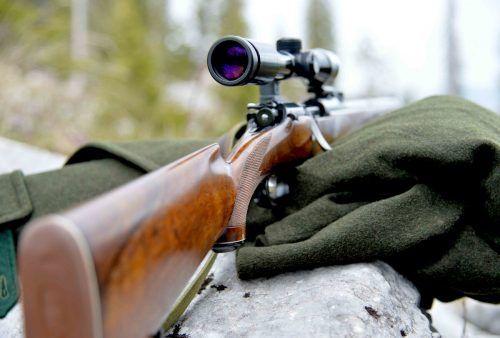 Waffenboom in Österreich: Der massive Anstieg ist laut Marktforschungsinstitut im Wesentlichen auf den Jagdbereich zurückzuführen. APA
