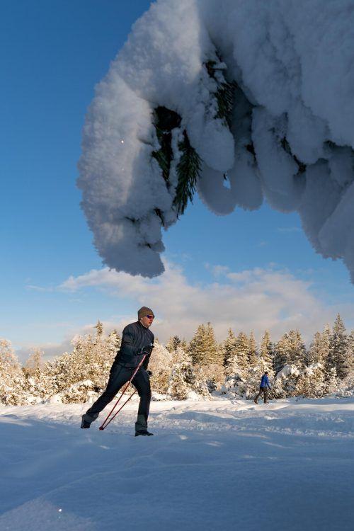 Wunderschön, aber bitterkalt: Die Wintersportler fanden am Wochenende gute Bedingungen vor. VN/Stiplovsek
