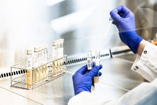 Am Donnerstag folgte die Gewissheit: Es handelt sich um die ersten Fälle der südafrikanischen Virusvariante in Vorarlberg. KHBG