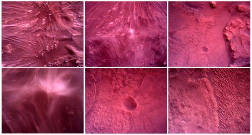 """Dank zahlloser Kameras an Bord konnte die Landung des Mars-Rovers """" Perseverance"""" in bisher nicht gekannter Weise eingefangen werden. Reuters/Nasa"""