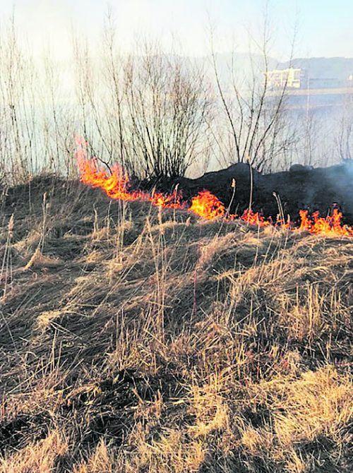 Die Brände waren aus unbekannter Ursache ausgebrochen. POLIZEI