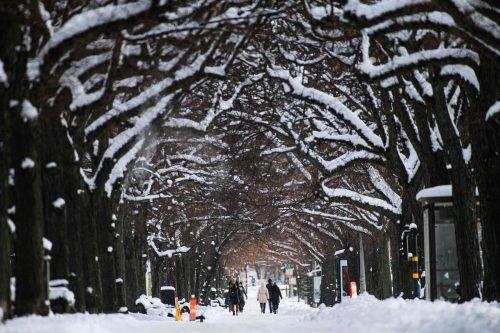 Die schwedische Hauptstadt Stockholm zeigt sich momentan von ihrer winterlichen Seite. AFP