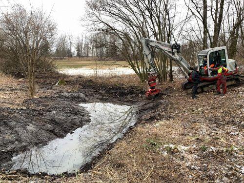 Im Feuchtbiotop am Rand der Streuwiesen Obere Mähder wurden kürzlich Instandhaltungsarbeiten vorgenommen.Gemeinde