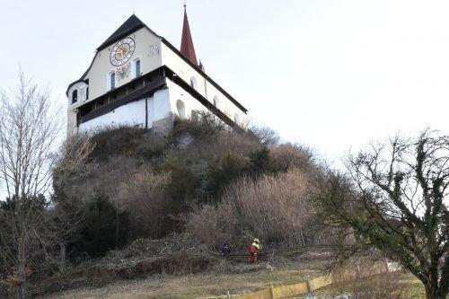 Mitarbeiter des Rankweiler Bauhofs beim Auslichten des Gehölzes am Liebfrauenberg.Marktgemeinde