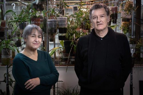 Das französische Architektenduo Anne Lacaton and Jean-Philippe Vassal wird mit dem renommierten Pritzker-Preis ausgezeichnet. afp