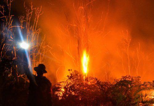 Die Feuerwehr kämpft in Pekanbaru in der indonesischen Provinz Riau gegen einen verheerenden Waldbrand. AFP