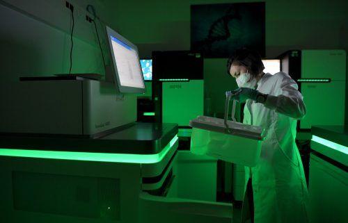 Die Studie soll u.a. zeigen, wie das Immunsystem auf das Virus reagiert. apa