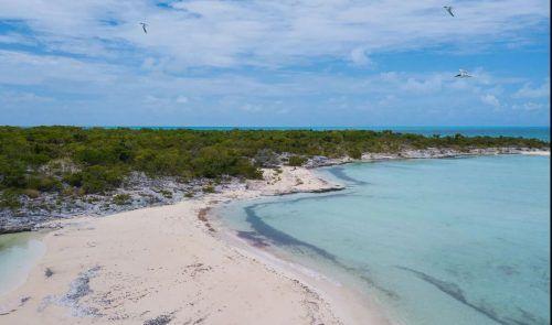 Die unbebaute Insel ist dem Auktionshaus zufolge rund 295 Hektar groß.