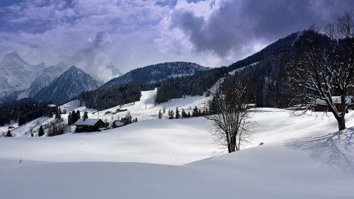 Ein geplantes Deponieprojekt im beliebten Wander- und Naherholungsgebiet Tschengla sorgt derzeit für viel Wirbel in Bürserberg.