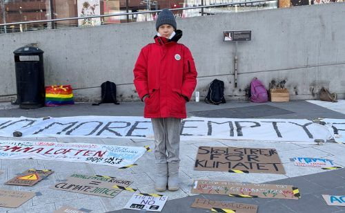 In Stockholm streikten die Aktivisten – darunter auch Greta Thunberg – im Schichtbetrieb, um größere Menschenansammlungen zu vermeiden. Reuters