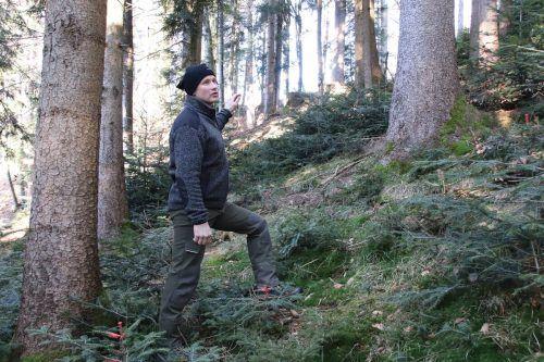 Waldaufseher Thomas Böhler führte durch den Bildsteiner Wald.