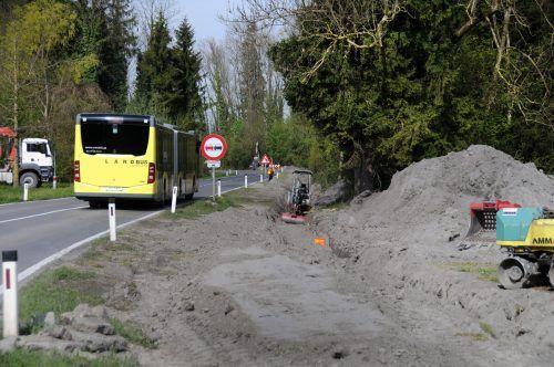 Bau der Trinkwasser-Verbundleitung an der L 19 zwischen Höchst und Gaißau.