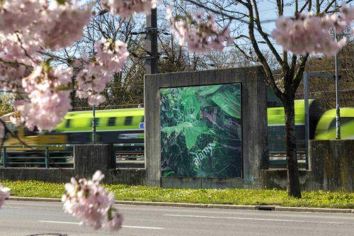 Billboards von Pamela Rosenkranz in der Bregenzer Bahnhofstraße. KUB/Tretter