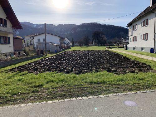 Das Grundstück mit Wasseranschluss und Gartenhäuschen ist optimal für einen Gemeinschaftsgarten.Egle
