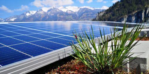 """Die """"grüne"""" Solaranlageauf dem Dach des Rauch-Werkes in Nüziders bietet ökologische Nischen und höheren Wirkungsgrad. FA"""