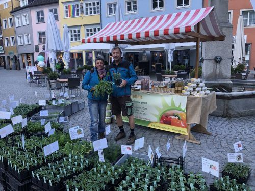 Dorothea und Armin Rauch aus Dünserberg bieten seit Kurzem Gemüsepflanzen aus eigener Zucht auf dem Wochenmarkt in Feldkirch an.