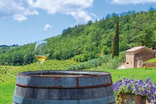 Ein Gläschen Malvasier inmitten der Weinberge genießen.Shutterstock (3)