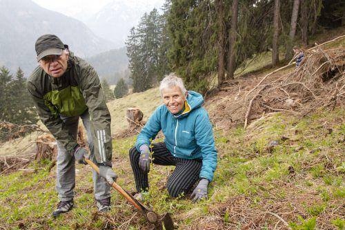 Für Armin und Monika Furlan aus Bludenz ist das Mithelfen bei der Baumpflanzaktion Ehrensache. VN/JUN
