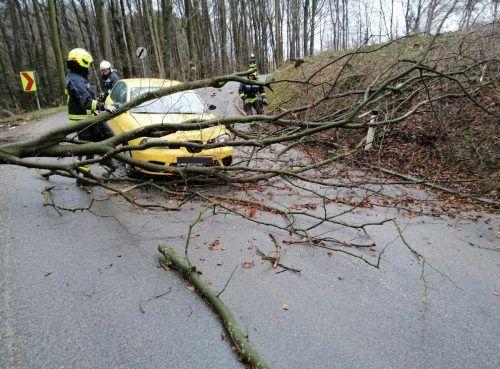 Immer öfter werden in Österreich sturmbedingte Feuerwehreinsätze nötig. Ein Trend, der anhält. apa/Preinsbach
